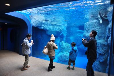 海洋馆鱼缸