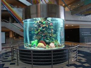 海洋珊瑚鱼缸