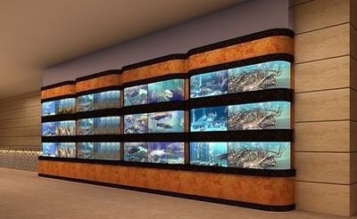 酒店海鲜鱼缸